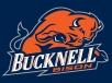 bucknell_bison